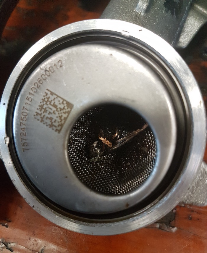 Kip of ei motorschade BMW 535 D oorzaak als gevolg van reparatie Driving-Dutchman