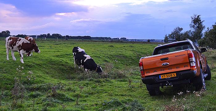 de-nieuwe-ford-ranger-op-grijs-kenteken-5